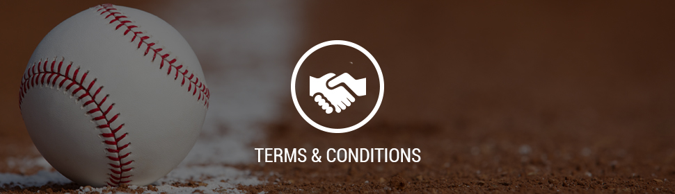 terms-and-conditions.jpg